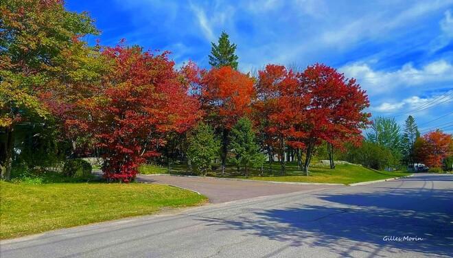 L'automne. Saguenay, QC