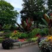 Rosseta McClain Garden.