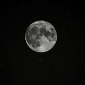 Full Harvest Full Moon