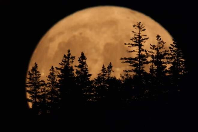 Moon Over Corner Brook Corner Brook, NL