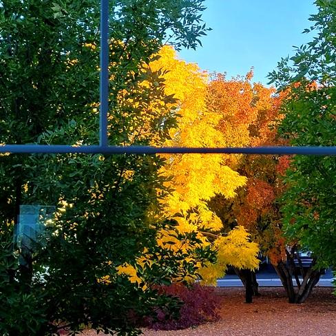 untitled Saskatoon, SK