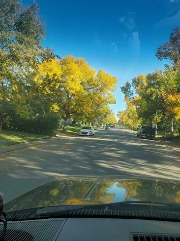 fall Regina, SK