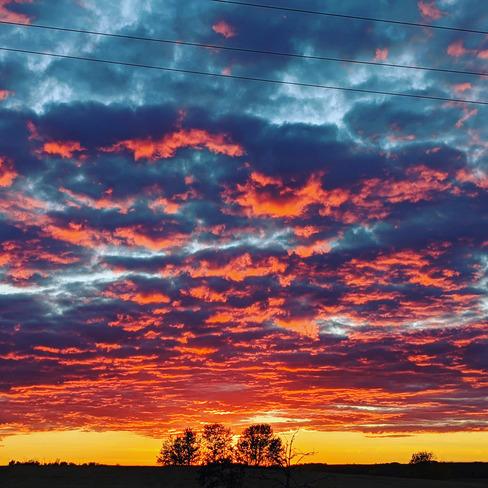 sunset Britannia No. 502, SK