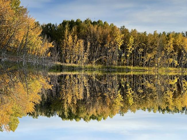 Reflections Bearspaw, Alberta, CA