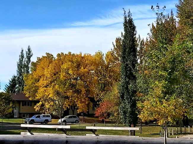 The Changing of the Seasons High River, AB