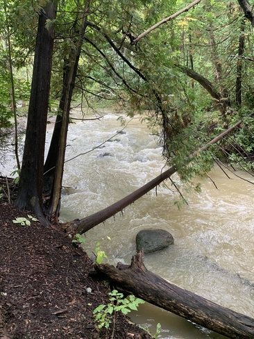 Hewitt Creek Barrie, Ontario, CA