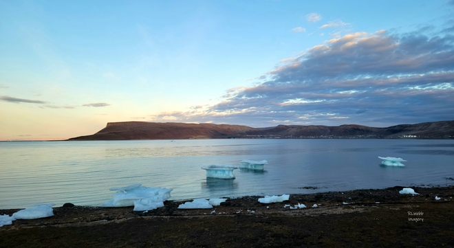 floating on by Arctic Bay, Nunavut