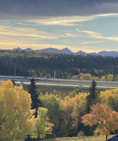 Autumn in Calgary Calgary, Alberta   T2W 5R5