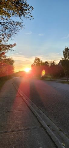 Super sunny sunset Oak Ridges, ON