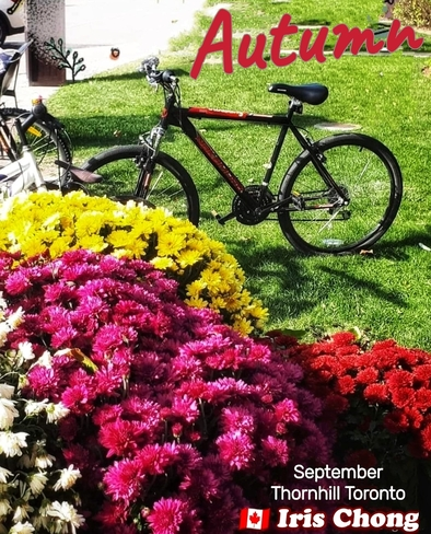 Sept 24 2021 Hello Autumn - Happy Friday!:) Thornhill Thornhill, ON