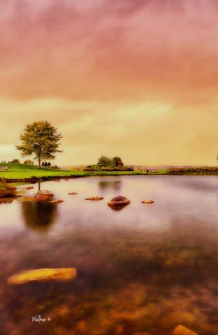 Pond Ottawa, ON