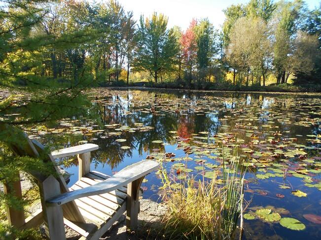 relaxant Jardin des Premières-Nations, Montréal, QC