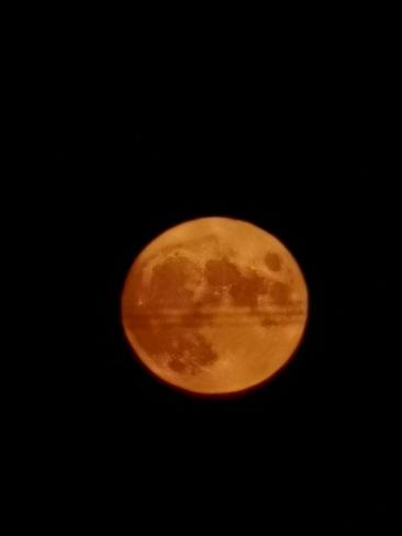 Harvest Moon Acadieville, NB