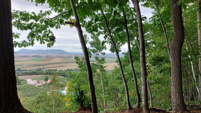 Vue de la montagne Rougemont, QC