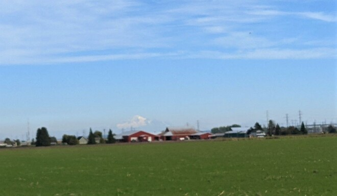 Farmhouses and Mt. Baker Vancouver, BC