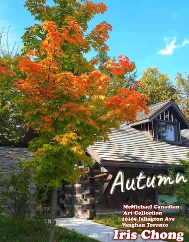 Sept 26 2021 Beautiful Autumn - McMichael Canadian Art Collection - Vaughan Islington, ON