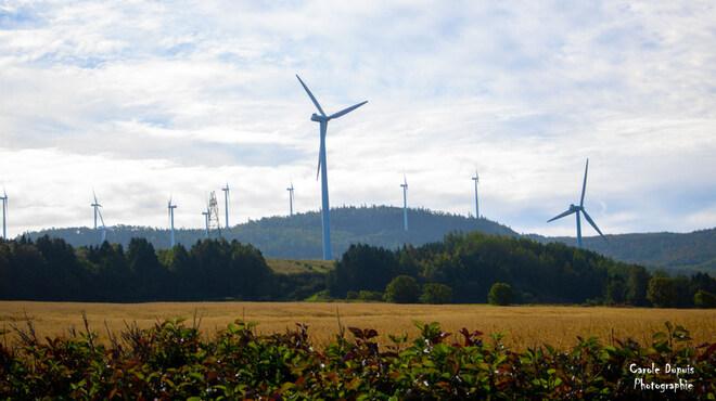 Éoliennes/Cap-Chat (Gaspésie) Boulevard de Saint-Majorique, Gaspé, QC