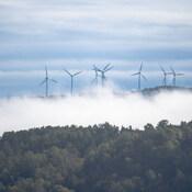 Éoliennes/Cap-Chat (Gaspésie)