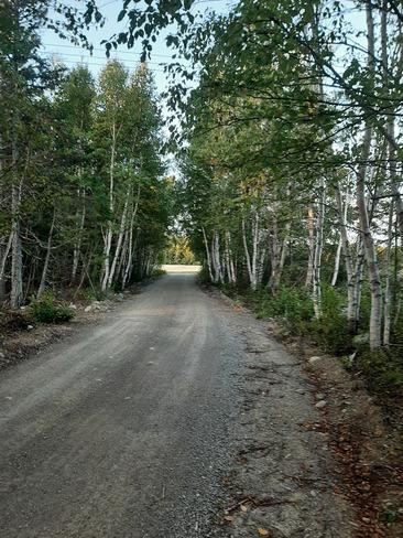 Staycation Newfoundland, Newfoundland and Labrador