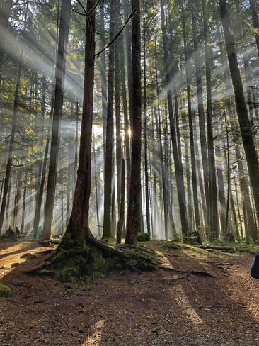 Sunrise Squamish, British Columbia, CA
