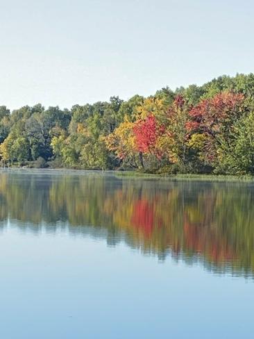Fall colors Kitigan Zibi, Quebec, CA
