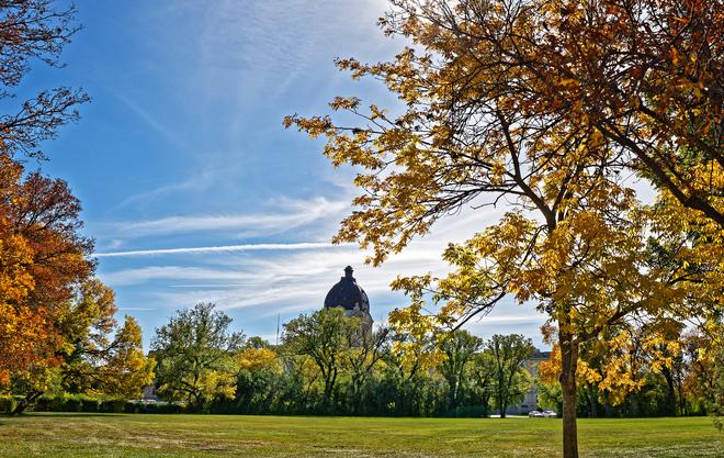 Fall colours Regina, SK
