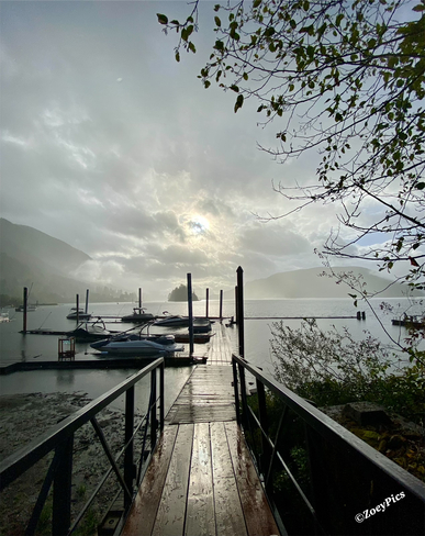 Fall morning on Cowichan Lake! Youbou, British Columbia, CA