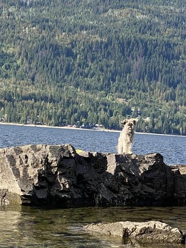 Life in the Shuswap Shuswap, British Columbia, CA