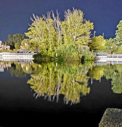 reflection Ottawa, ON
