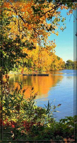L'automne à LaSalle LaSalle, QC