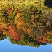 Refet d'automne...