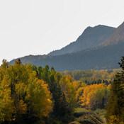 Couleurs d'automne/Parc National Forillon