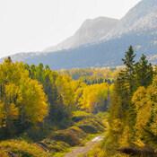 L'automne en Gaspésie