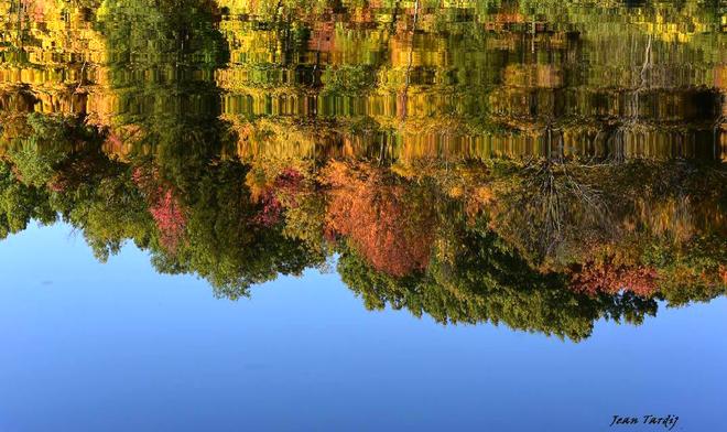 Reflet d'automne... Saint-Jean-sur-Richelieu, QC