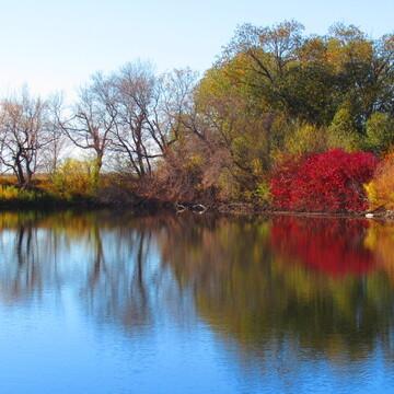 Saskatchewan Fall Colours