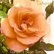 Garden's Swan Song