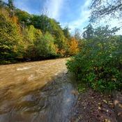 Down the Creek
