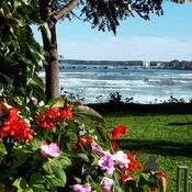Oct 14 2021 Autumn - One day trip - Niagara Falls