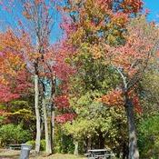 belle journée d automne