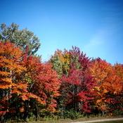 L'automne est à nos portes.