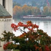 new westminster. October on the Fraser River