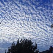 Puffy sky