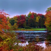 Fall scenery in South Stormont