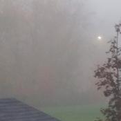 Grosse brume ce matin!