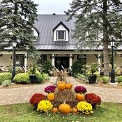 Willow Inn in Hudson
