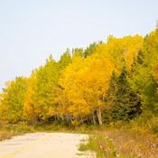 Bel automne Gaspésien