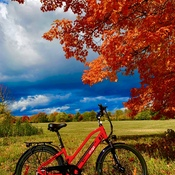 Bike outing
