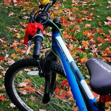 Oct 16 2021 13C Happy Saturday:) I love Autumn in Thornhill