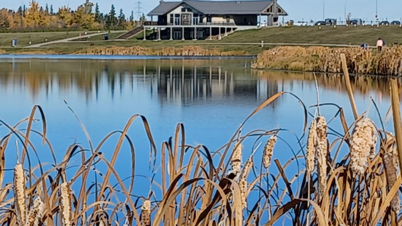 Fishing lake Pavilion