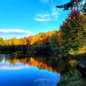 Trenton Park fall 2021